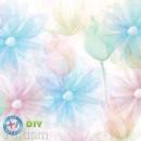 Yeidam Multicolor 14 Count Aida - Daisy